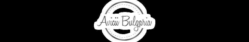 Avicii Bulgaria