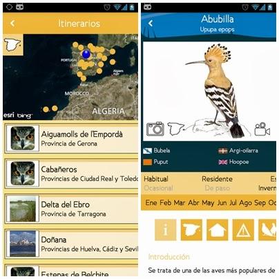 El mundo de la ecologia: descargar app Guía de las aves de