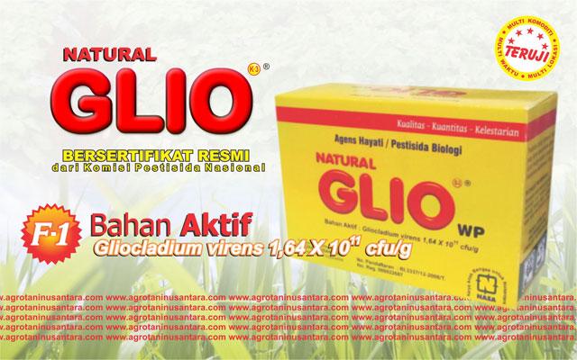 Produk Agens Hayati Natural GLIO NASA (PT. Natural Nusantara) untuk memberantas jamur Fusarium | Pesan Sekarang Hubungi 081904091115 / 089618222877 / Pin BB 24D7E156 | www.agrotaninusantara.com