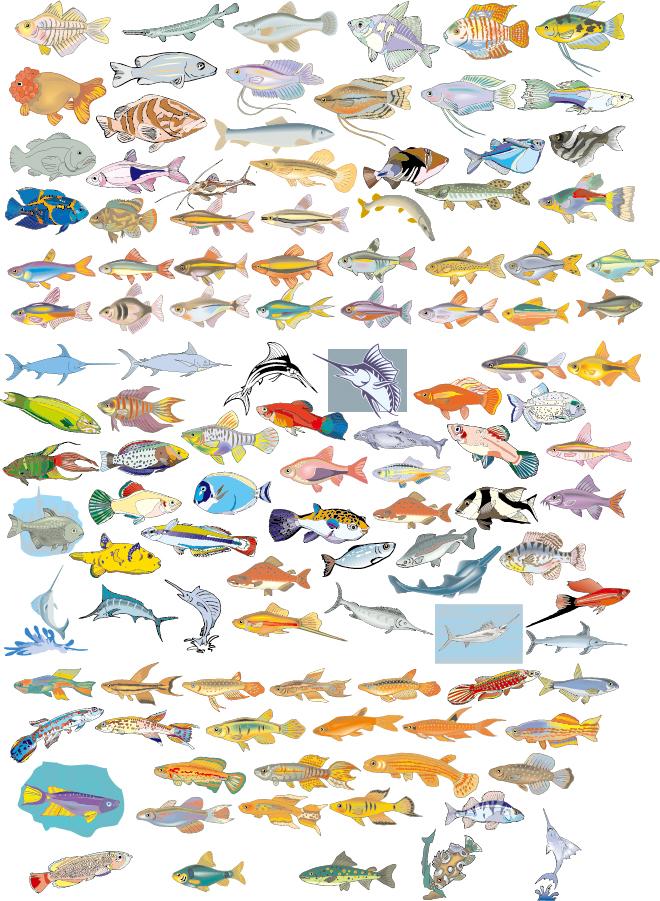 数多くの種類を集めた魚のクリップアート Big Vector Collection of Different Fish イラスト素材