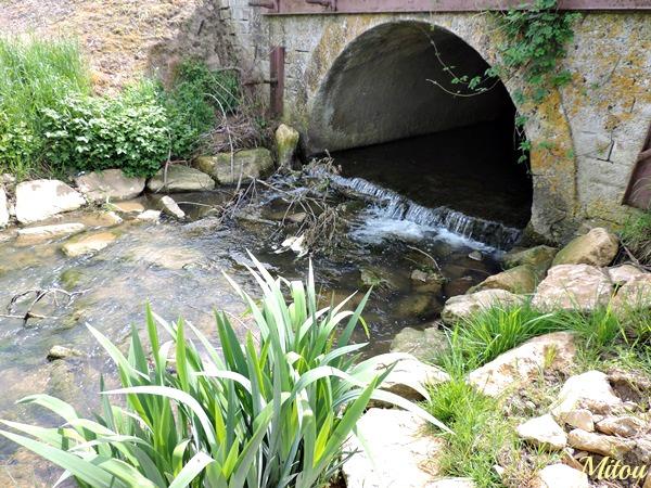 Mitou la bretonne tout au fond du jardin il y a - Laurent gerra cabane au fond du jardin ...