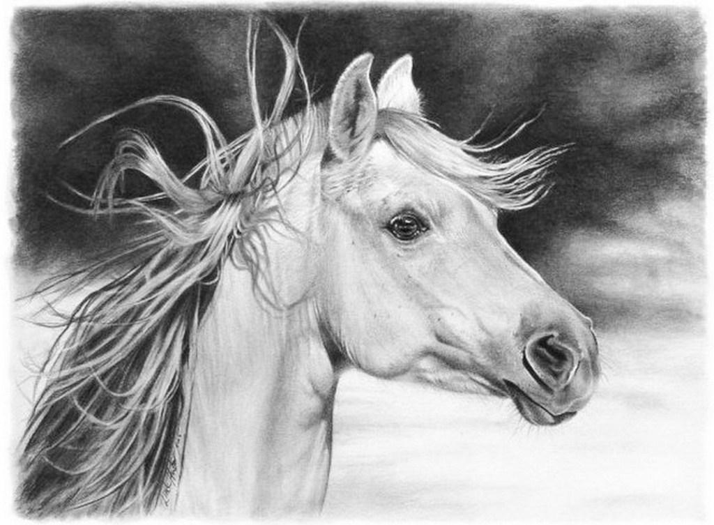 Dibujo Lapiz Animales Animales-pintados-a-lapiz