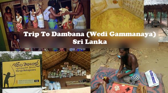 Trip To Dambana (Wedi Gammanaya) - Sri Lanka 2017
