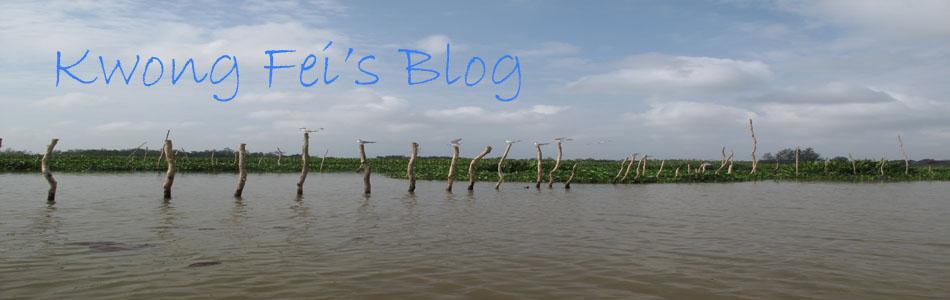 Kwong Fei's Blog