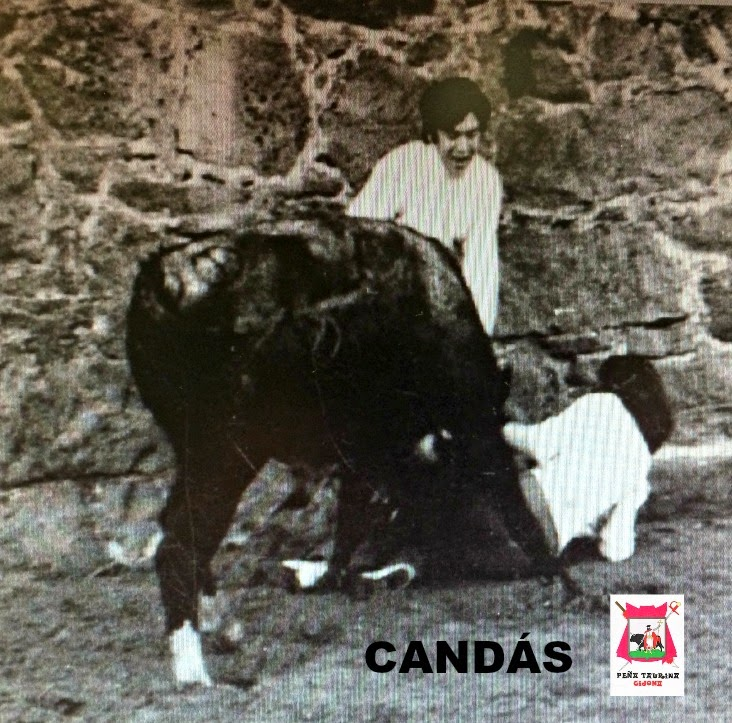 CANDAS TOROS