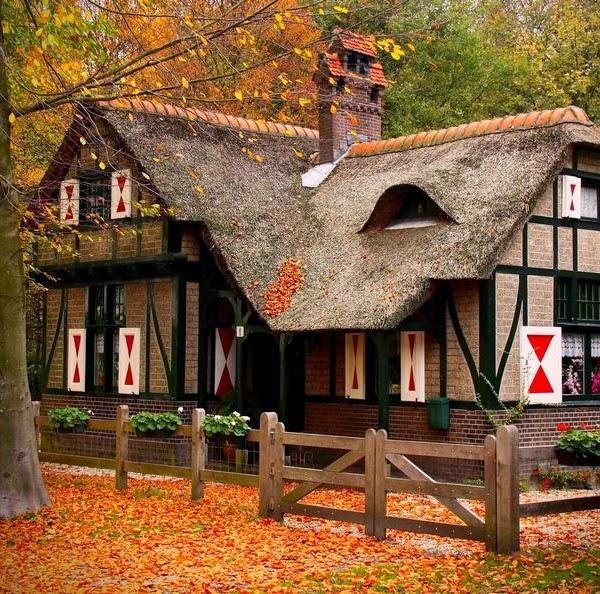 منازل خشبية مذهلة الغابات