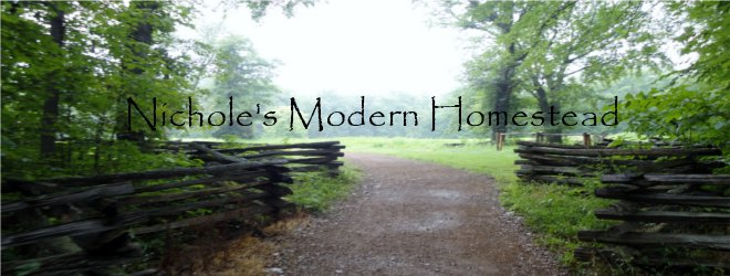 Nichole's Modern Homestead