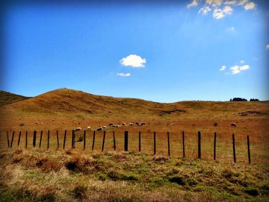 New Zeland.
