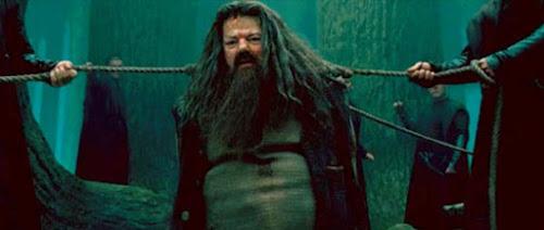 Bruxo do Mês de Novembro: Rúbeo Hagrid | Ordem da Fênix Brasileira