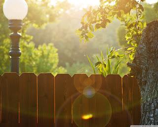 Деревянный забор. Фото 90