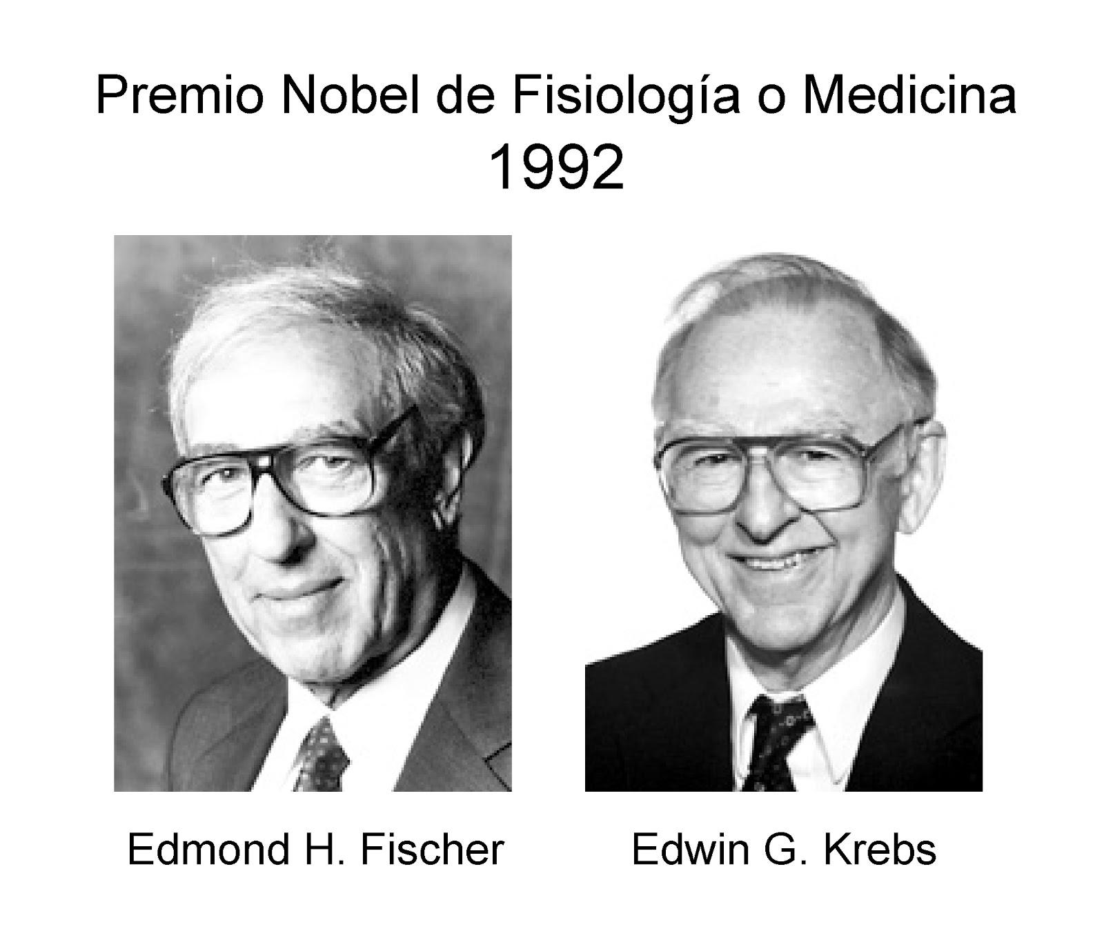 Edmond H Fischer y Edwin G Krebs