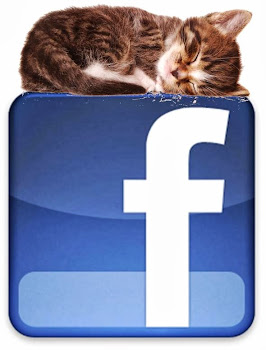 Sígueme en Facebook!!