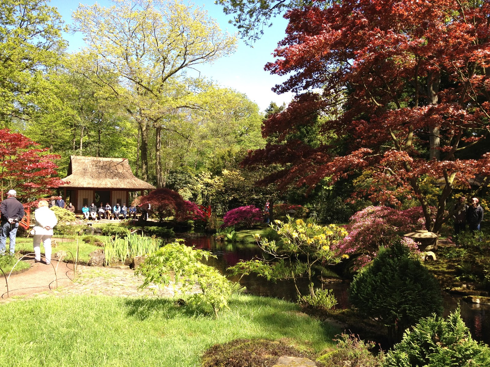 Japanese Garden, Clingendael Park, Den Haag   Happy Grapes Travels