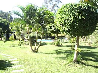 Vendo , Troco ou alugo Casa / Chácara - Brasil -foto jardim