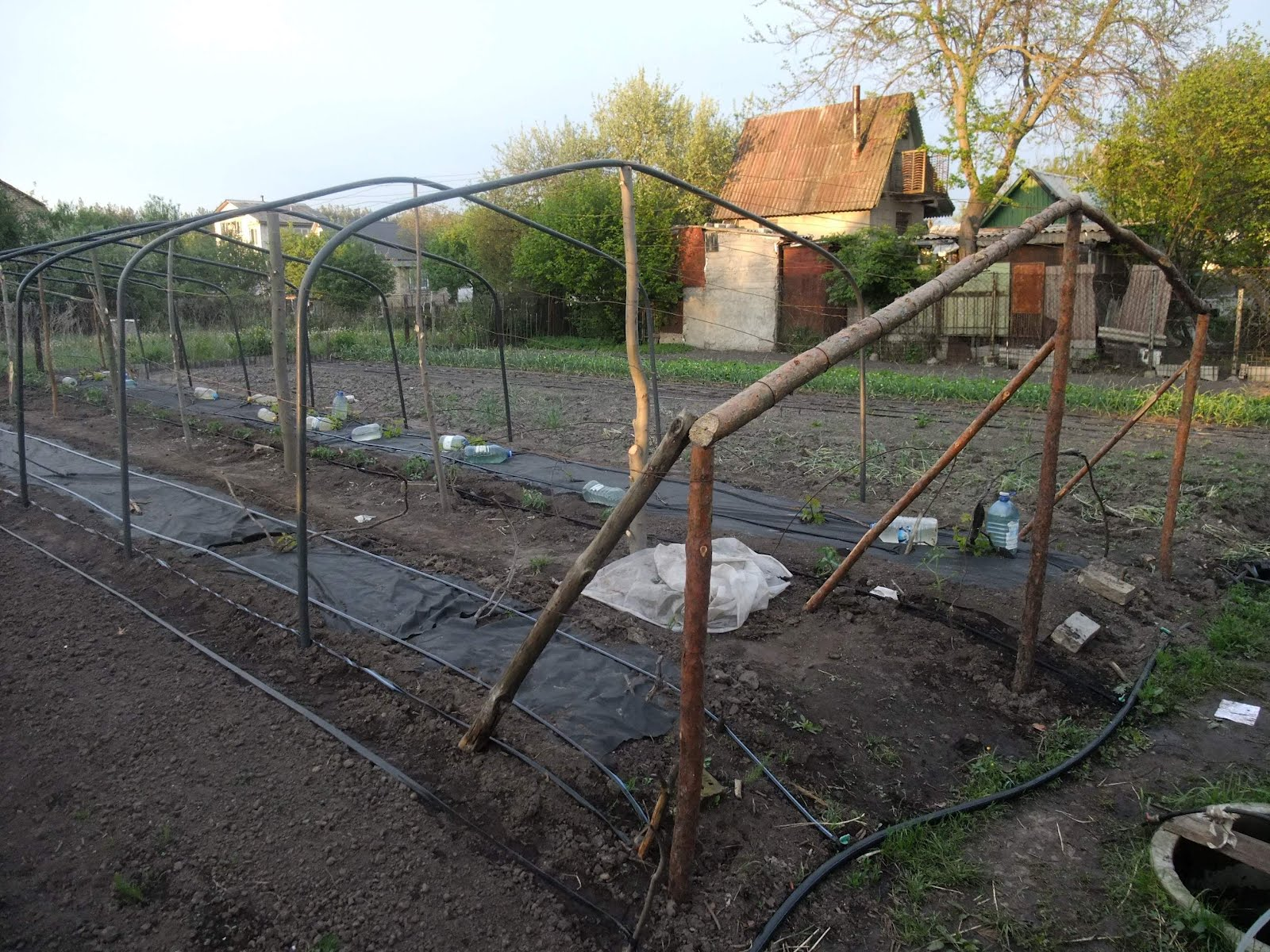 Шпалера для винограда своими руками, изготовление по фото 33