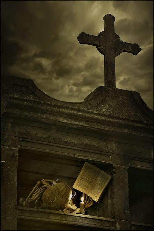 Ni muerto dejo de leer