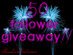 50 Follower Giveaway