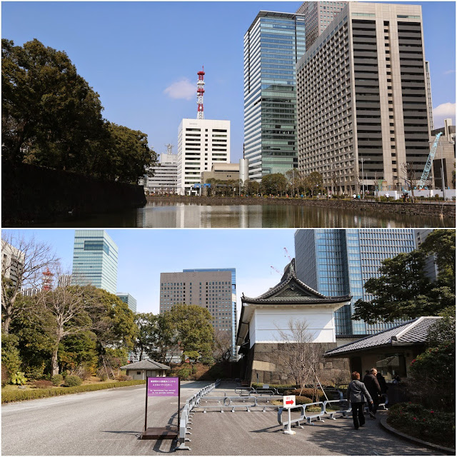 Imperial Palace East Garden is surrounded by skyscrapers in Marunouchi district of Tokyo, Japan