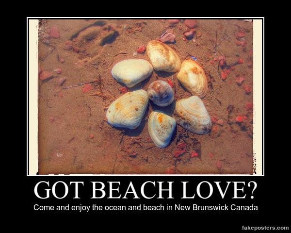 got beach love?