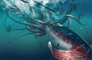 Kraken Sekedar Mitos Ataukah Fakta