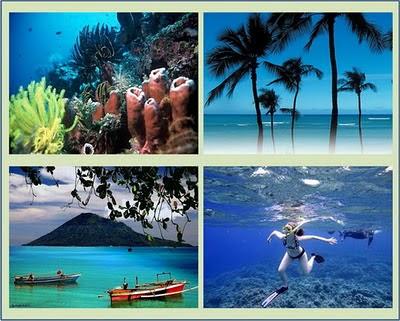 Wisata alam Bunaken