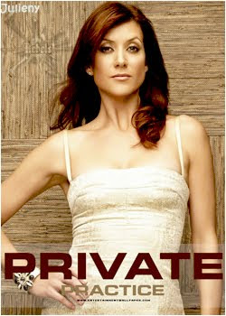 Assistir Private Practice 5ª Temporada Online Dublado Megavideo