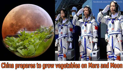 CHINA PREPARES TO GROW VEGETABLES ON MARS AND MOON
