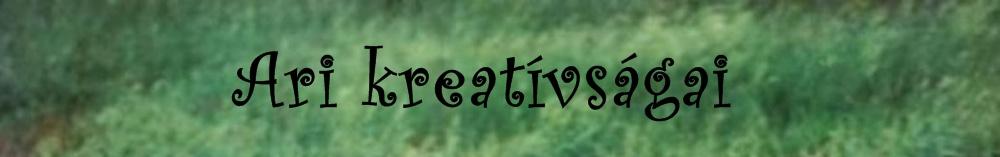 Ari kreatívságai