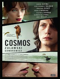 pelicula Cosmos (2015)