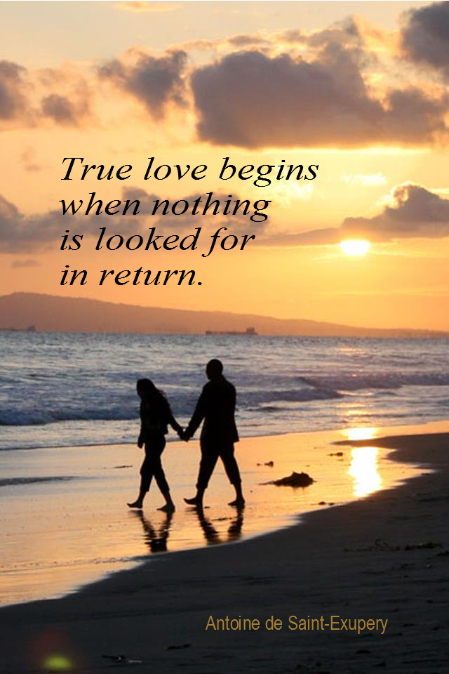visual quote - image quotation for LOVE - True love begins when nothing is looked for in return. - Antoine de Saint-Exupery