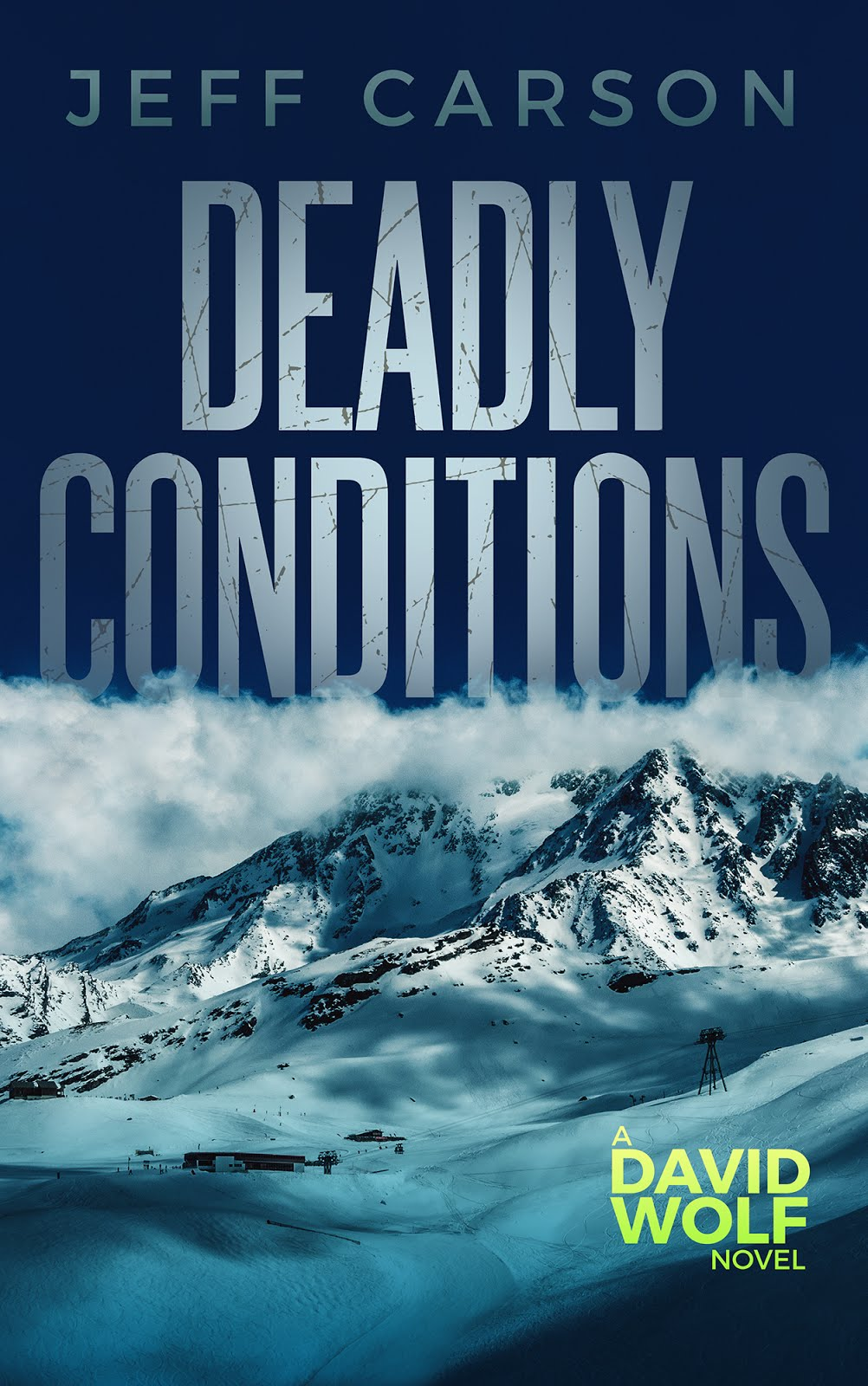Deadly Conditions (David Wolf Book 4))