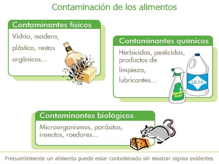Causas de Contaminación de los Alimentos ~ Diseño y Administración ...