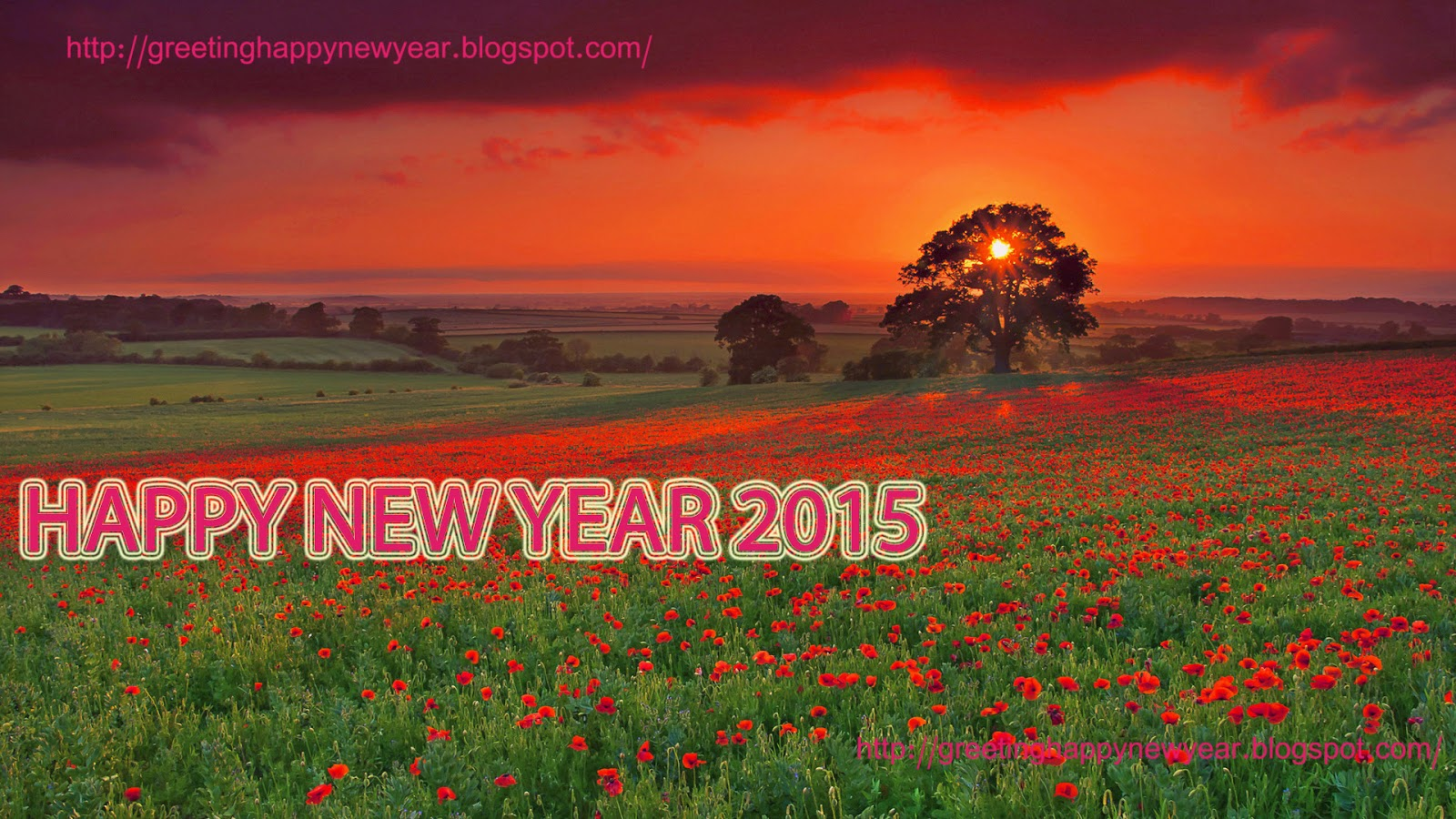 Happy New Year 2015 Wallpapers - HD Picture Latest Free Download
