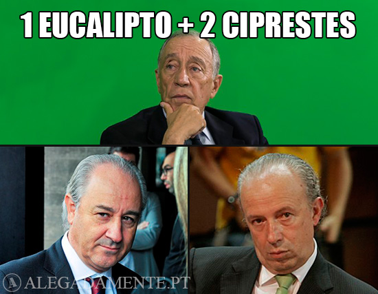 Imagens de Marcelo Rebelo de Sousa, Rui Rio e Pedro Santana Lopes – Um eucalipto e dois ciprestes