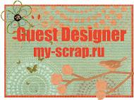 Я приглашенный дизайнер