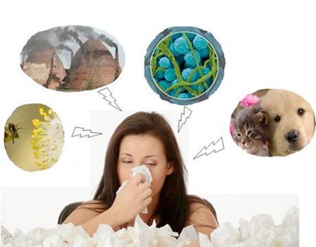 Uống thuốc gì chữa bệnh viêm mũi dị ứng?