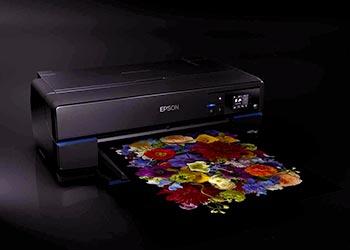 Epson SureColor P800 black print