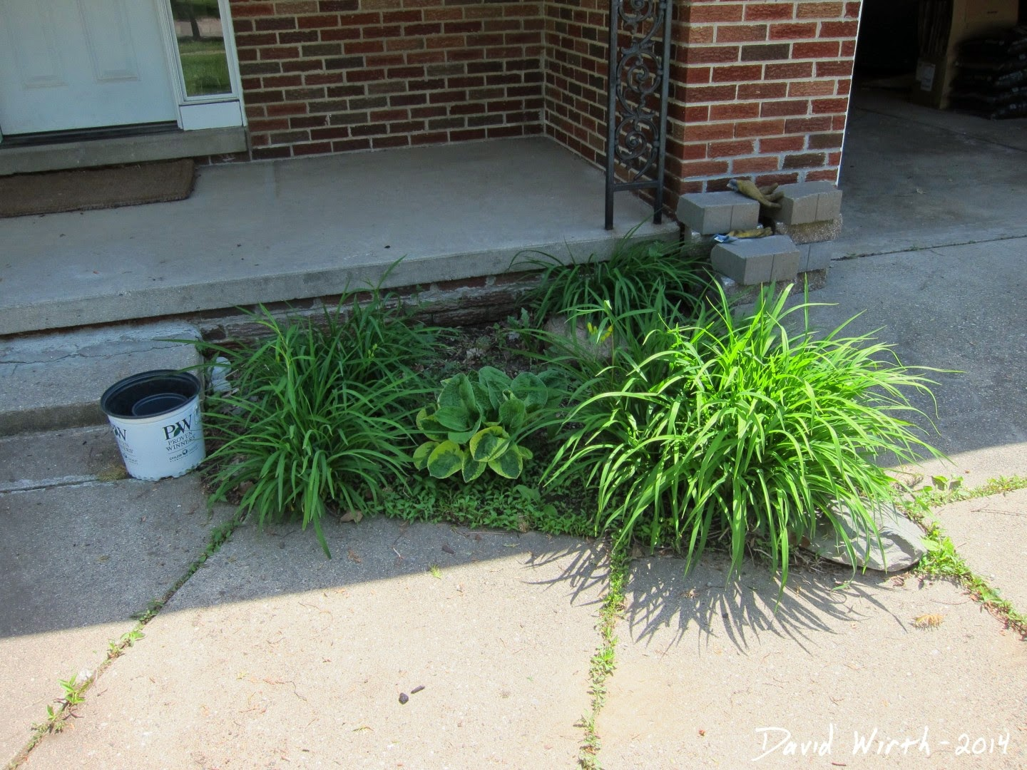 how to improve your front yard entrance
