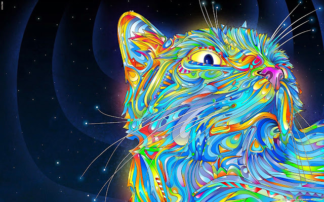 119028-Abstract Cat HD Wallpaperz