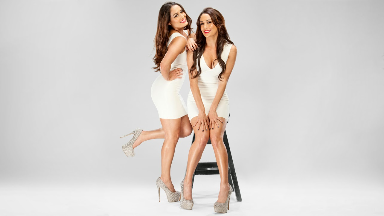 bella twins wwe brand new hd wallpaper 2014 15 world