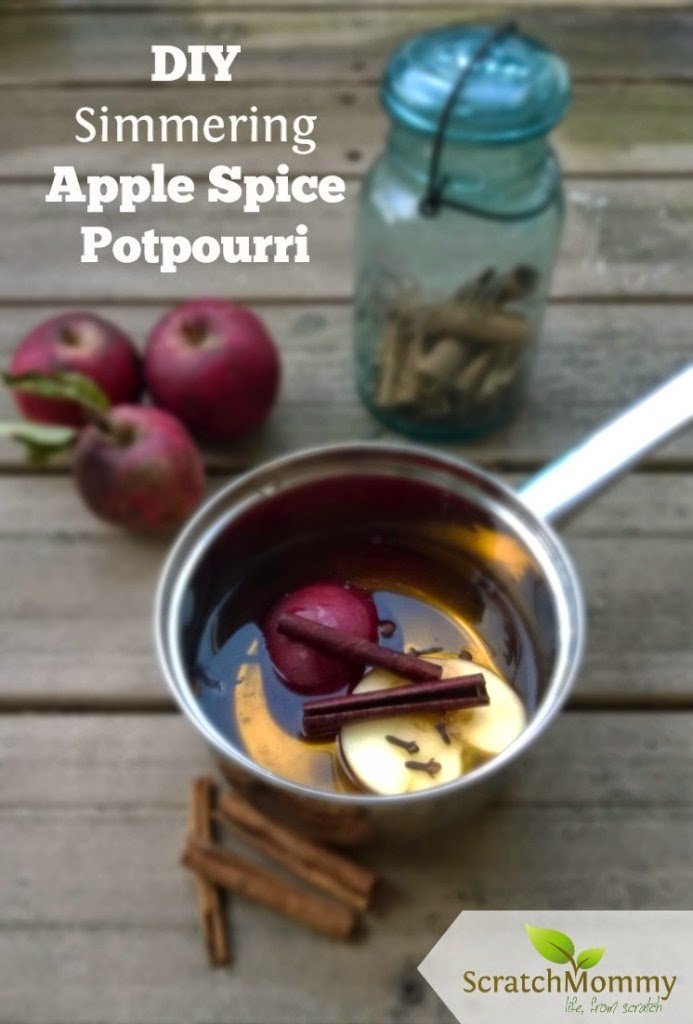 diy simmering apple potpourri - 3 recipes via: How to Just About Anything