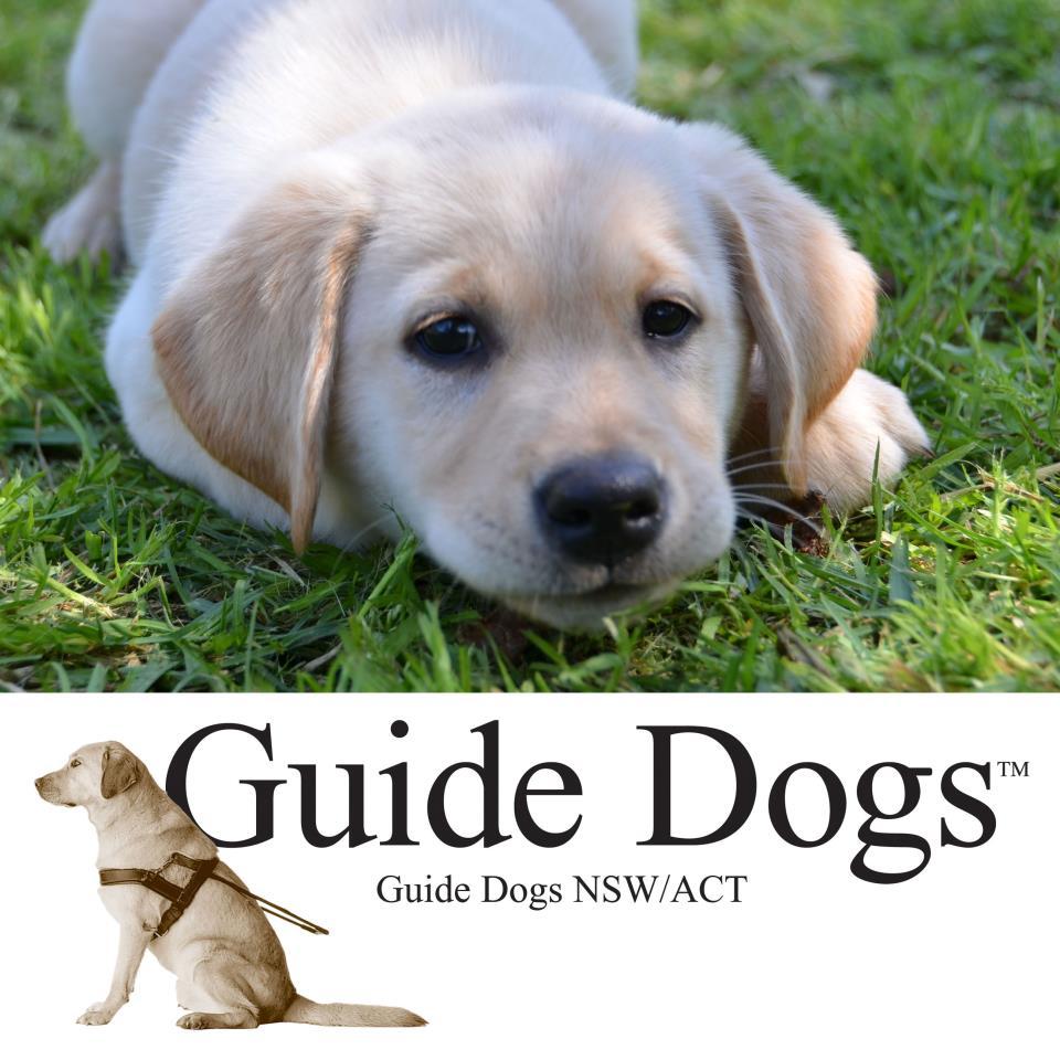 Guide Dog Australia Logo