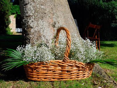 Paniculata deco bodas decoración