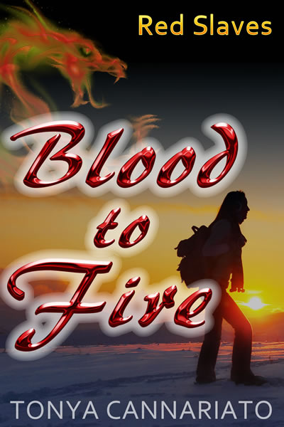 Blood to Fire - by Tonya Cannariato