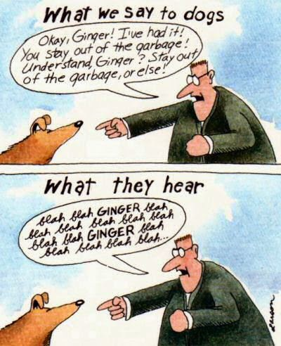 Gary Larsen - Far Side: What we say to dogs & What they hear.