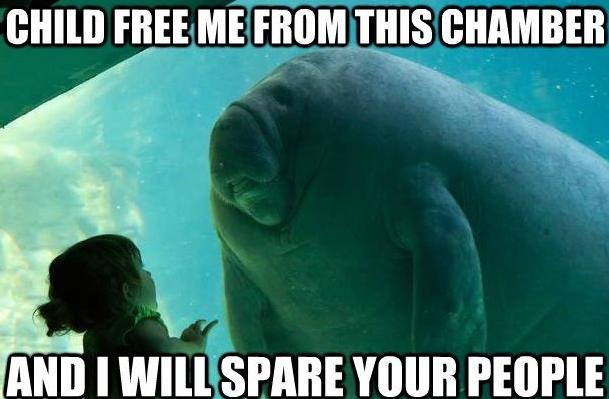 [Image: overlord-manatee-meme.jpg]