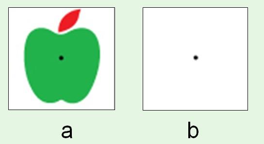 史貝爾之BioiT: 玩弄視覺