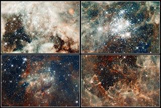 nebulosa tarantula telescopio hubble