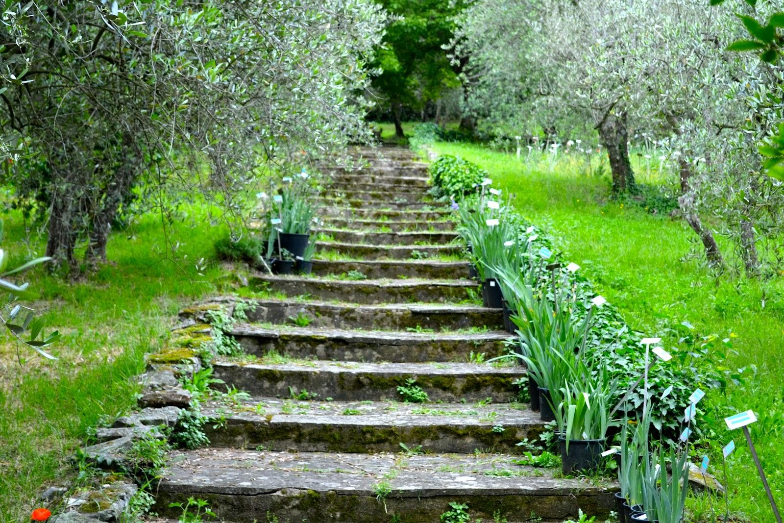 Hortibus voyage art et jardins en toscane florence for Jardin de toscane