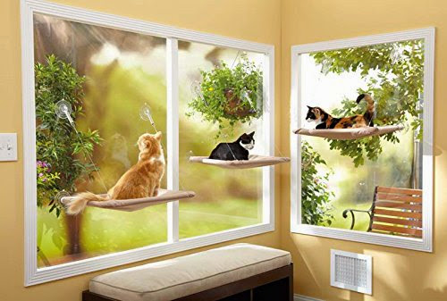 Coolest and Awesome Cat Gadgets (15) 16